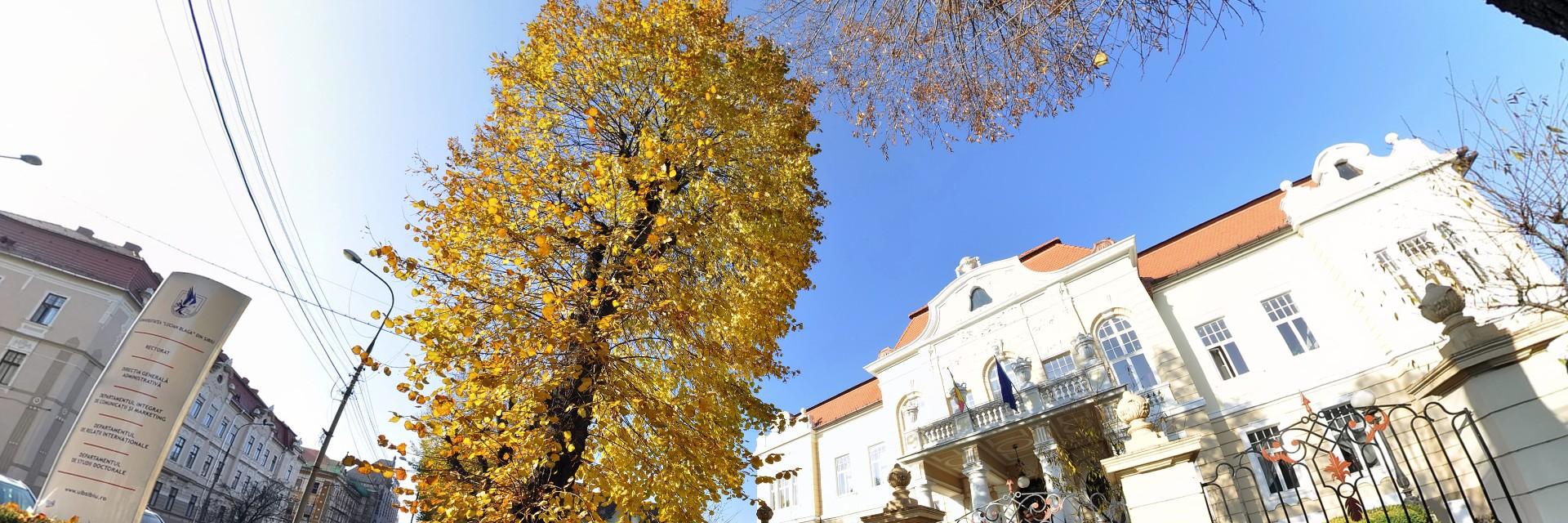 Universitatea Lucian Blaga Din Sibiu